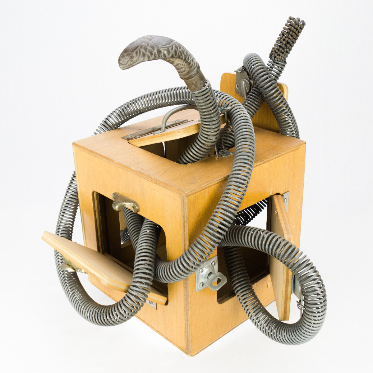 Snake In The Box