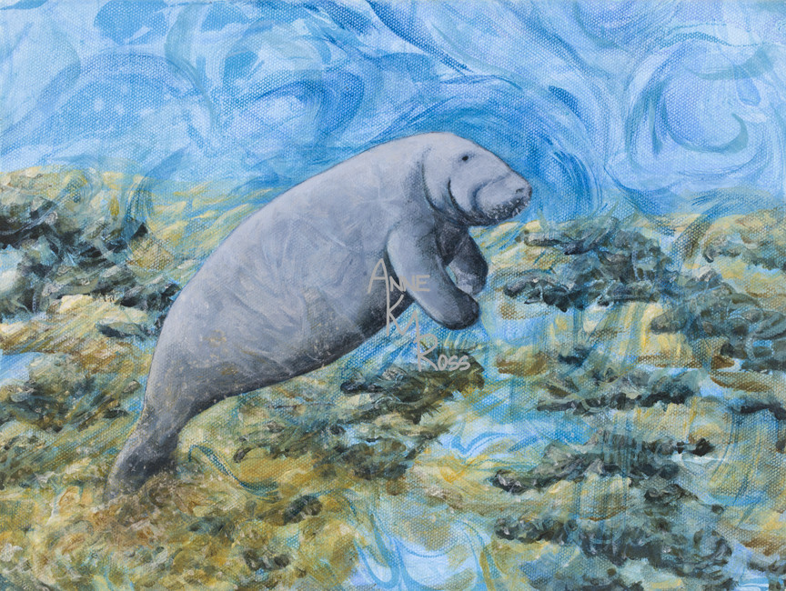 Silt and a Manatee by Anne KM Ross