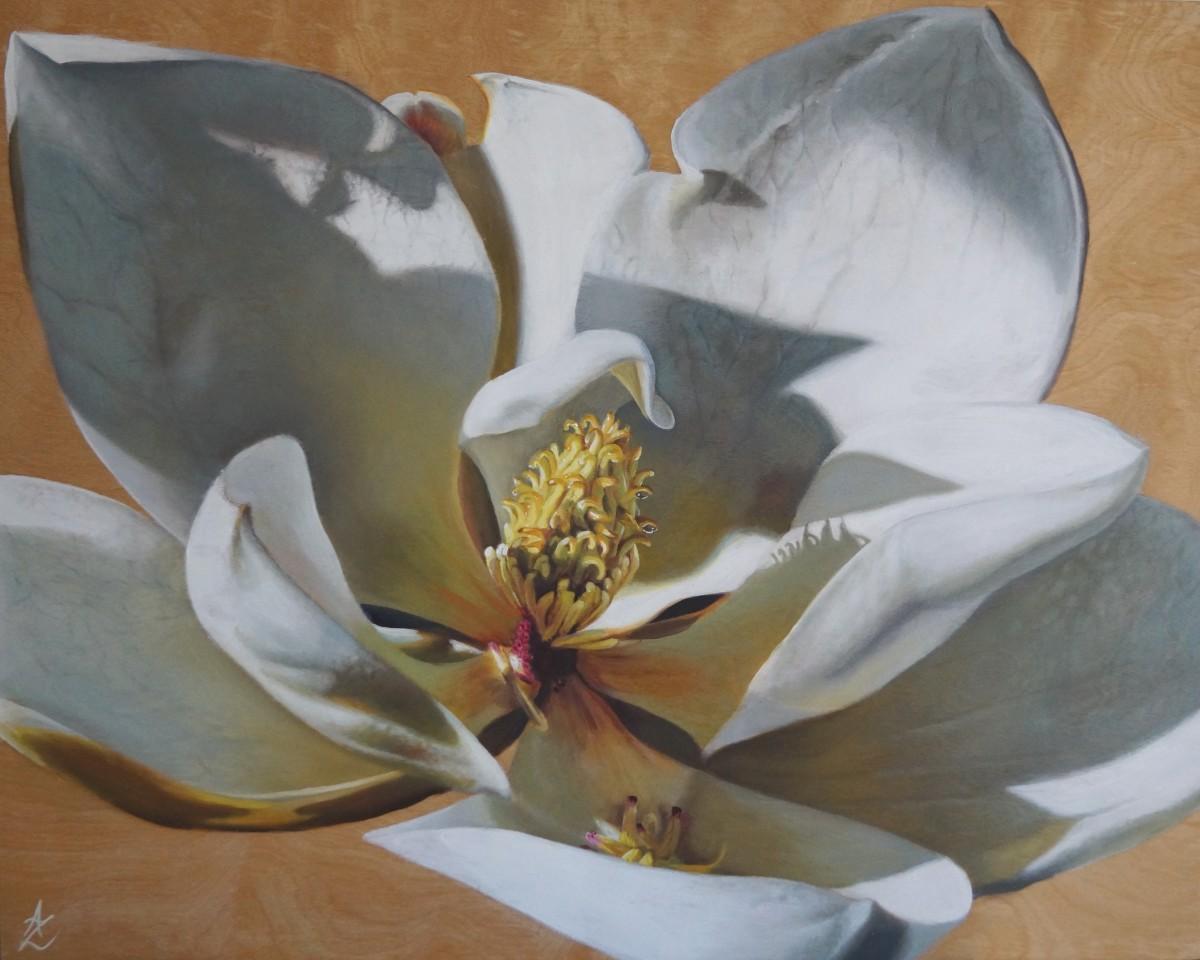 Magnolia by Anne-Marie Zanetti