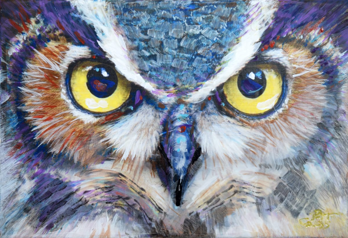Night Owl by Pat Cross