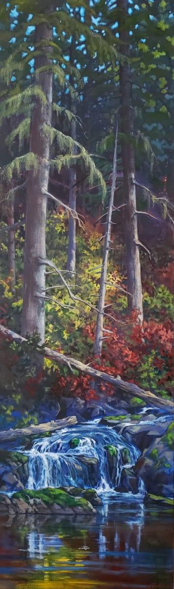 """Home Site creek - waterfall 2"" by Jan Poynter"