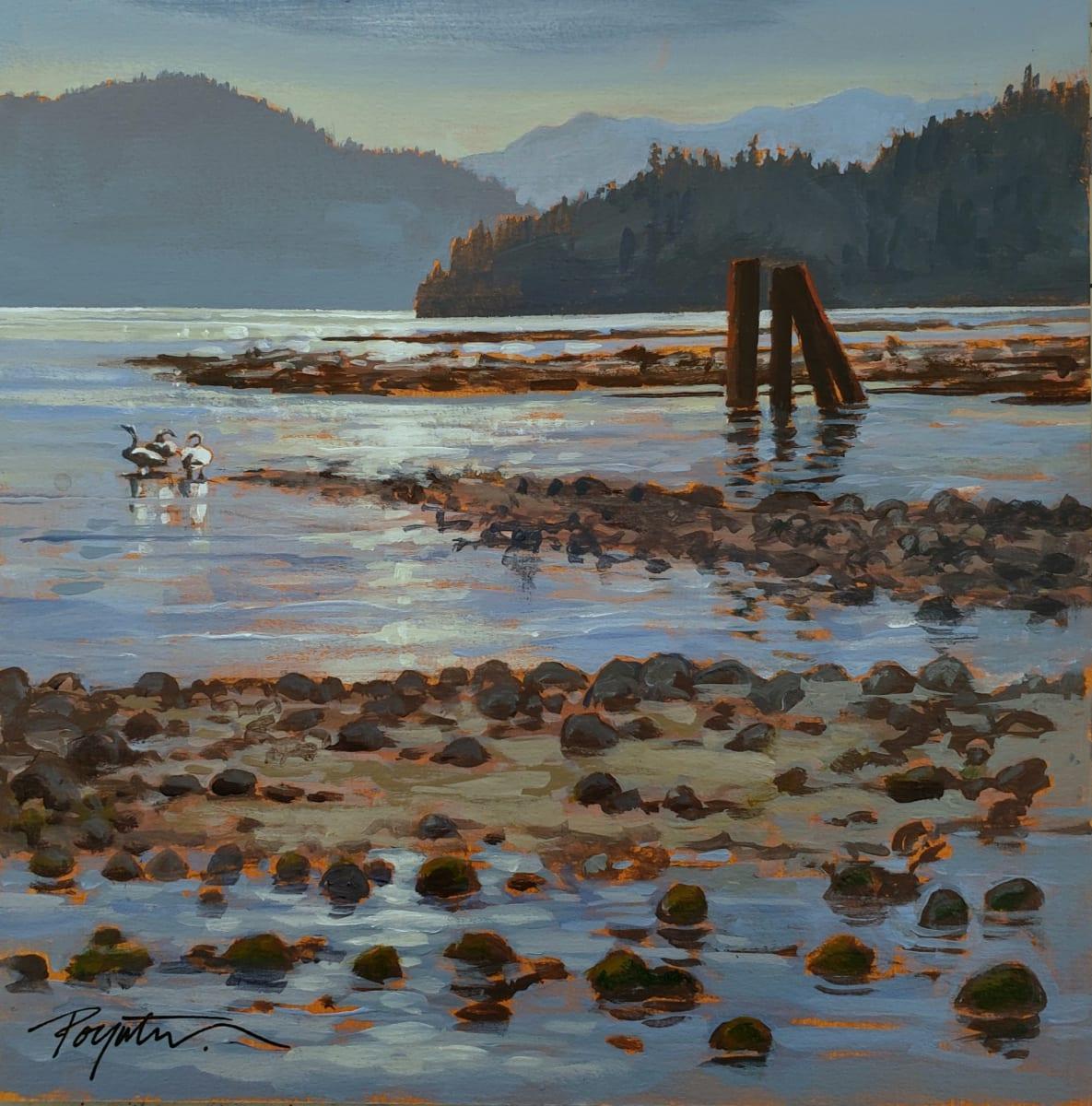 """""""3 swans - log sort""""  McNair Creek. West Howe Sound by Jan Poynter"""
