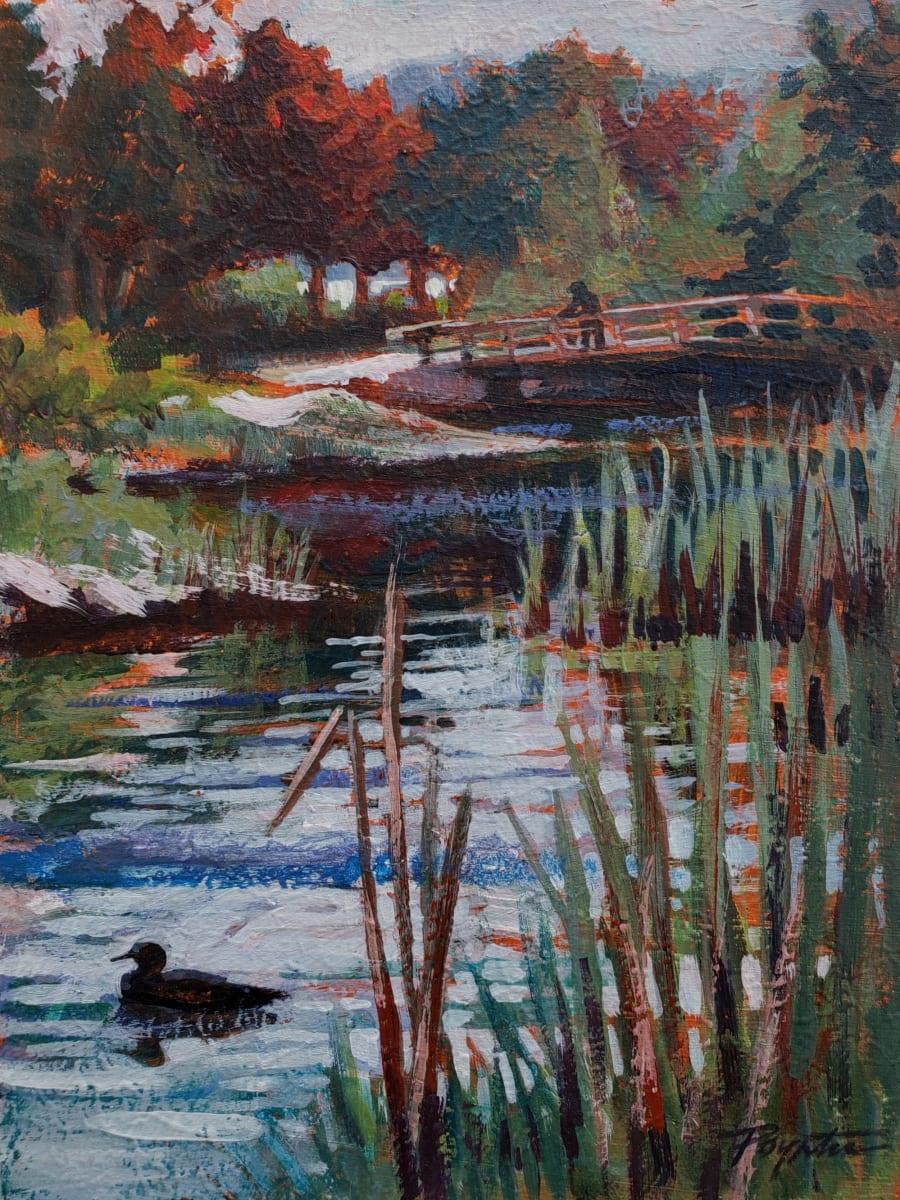 """""""Sechelt Marsh - duck"""" by Jan Poynter"""