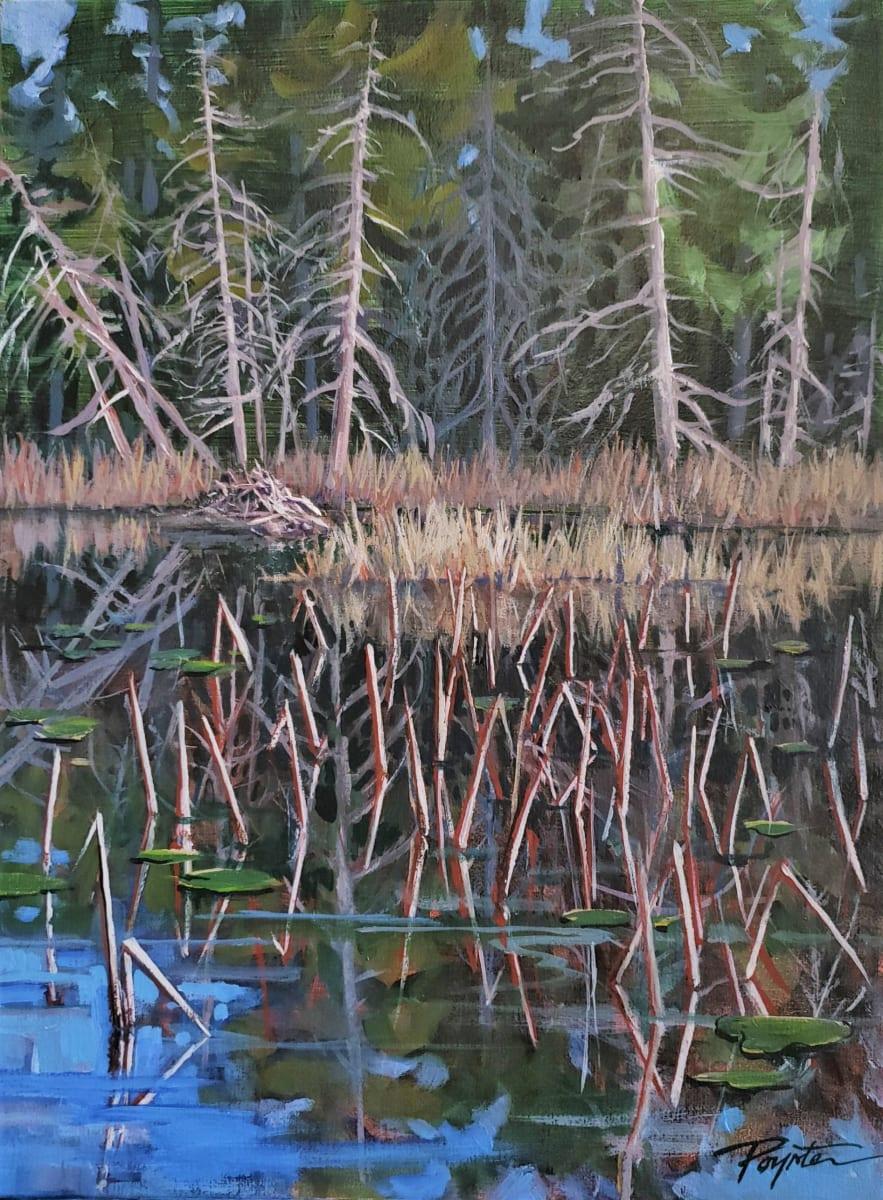 """First light - Snag / Dam"" Trout Lake - Sunshine Coast B.C. by Jan Poynter"