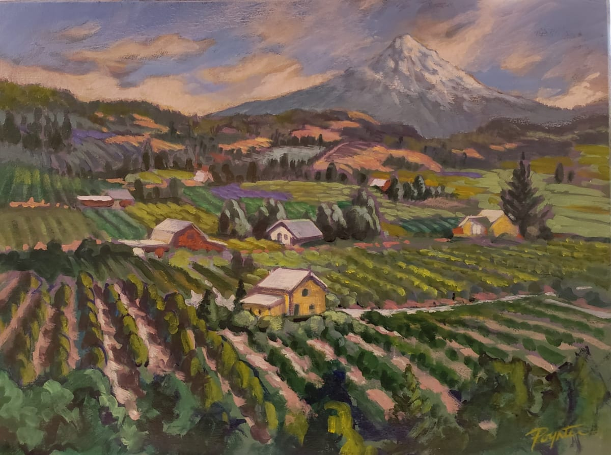 Farmland overlook - mt Hood Ore by Jan Poynter