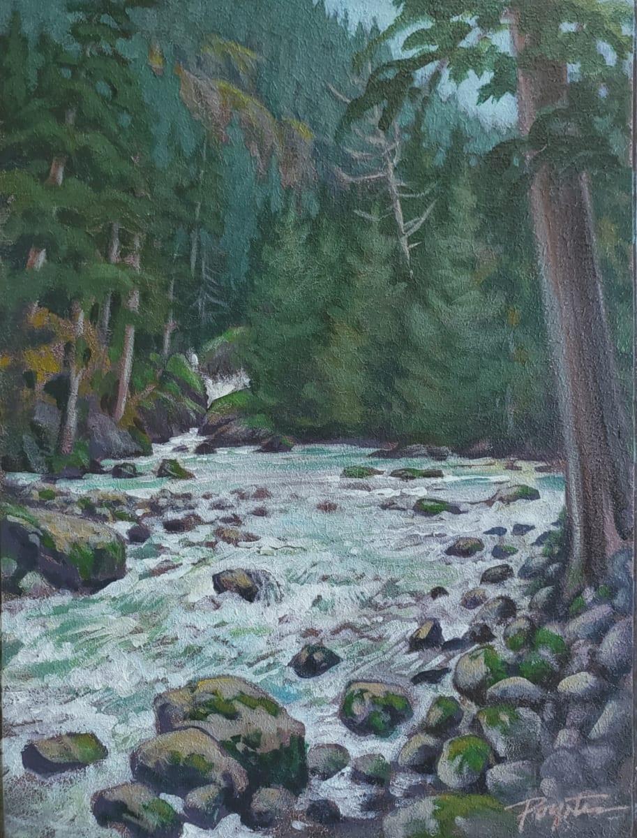 Below Nairn Falls - Pemberton by Jan Poynter