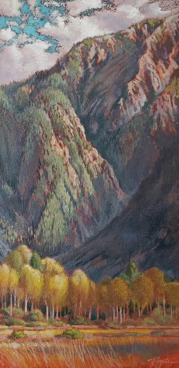 Valley Gold - last light Mt Currie by Jan Poynter