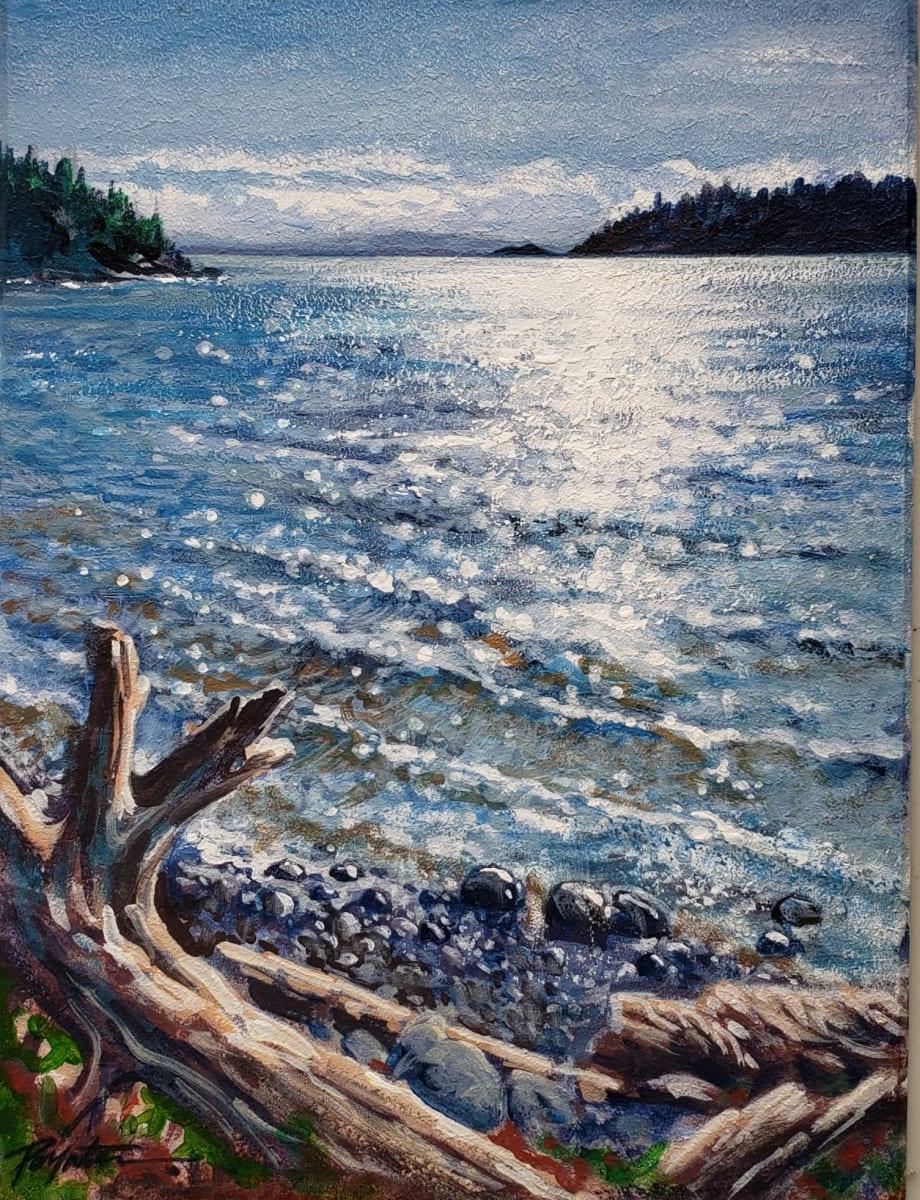 """Sparkling edge - McCourt Beach"" West Sechelt by Jan Poynter"