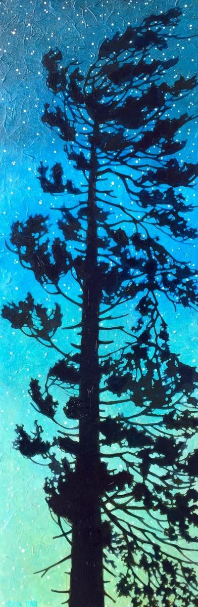 Goodnight Pine