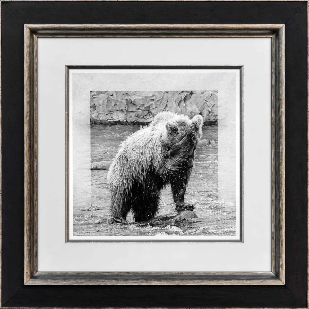 Katmai Baptism: Young Grizzly Series