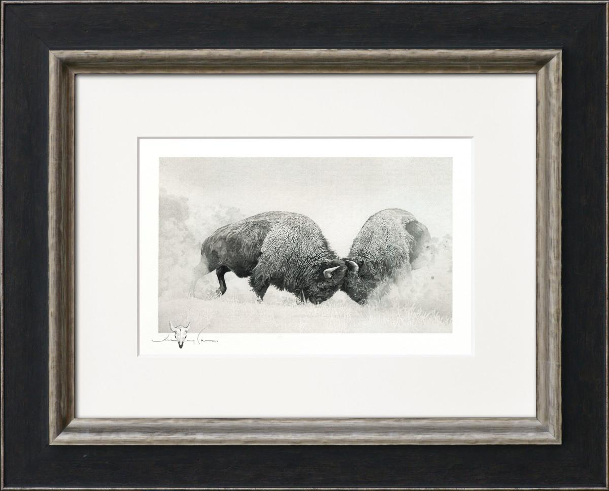 Double Trouble: Bison Series: Original