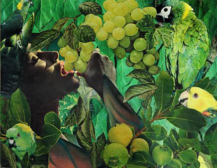 Fruit of the Vine by Merrilyn Duzy