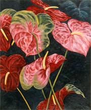 Red & Pink Anthuriums
