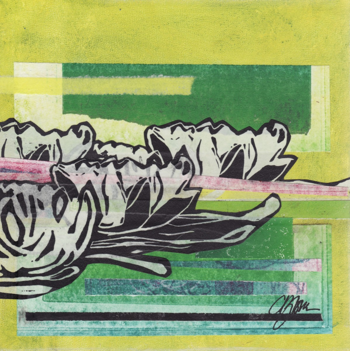 Waterlily Dreams (1)