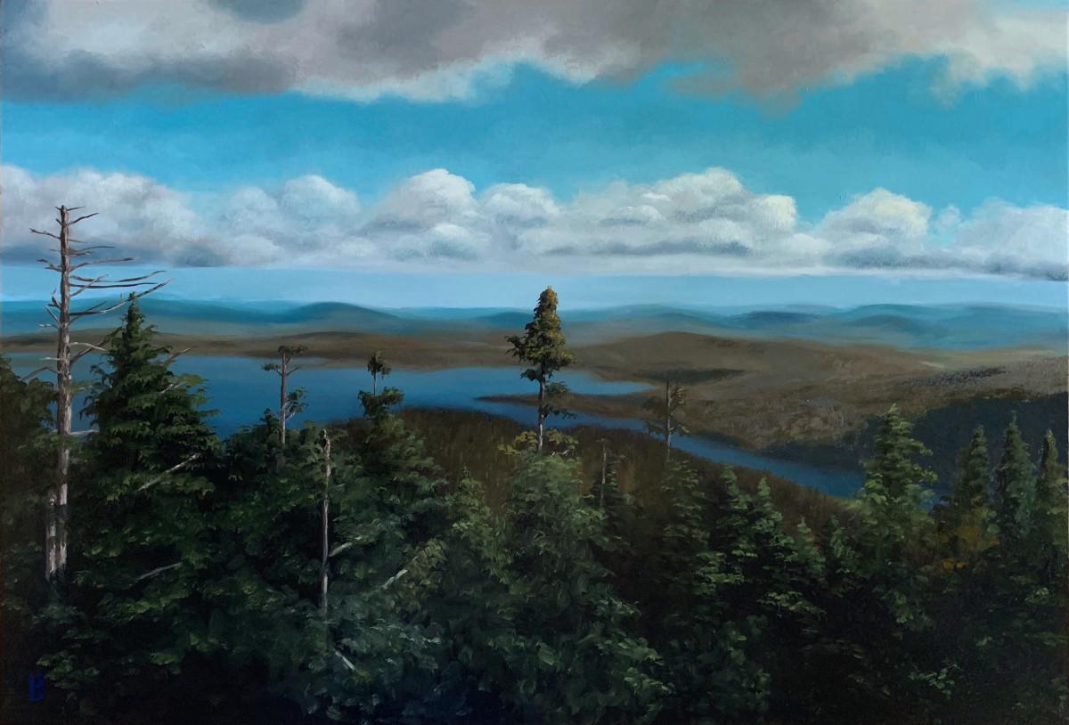 Flagstaff Lake, Maine by Paul Beckingham