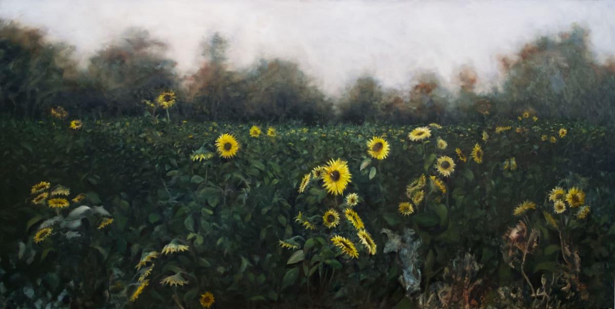 Georgia Sunflowers by Paul Beckingham