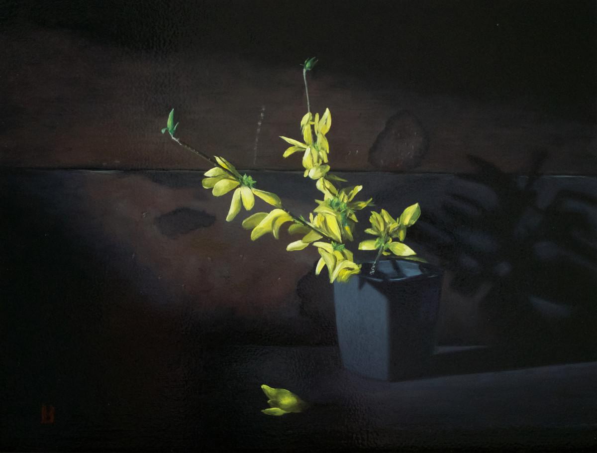 Forsythia by Paul Beckingham