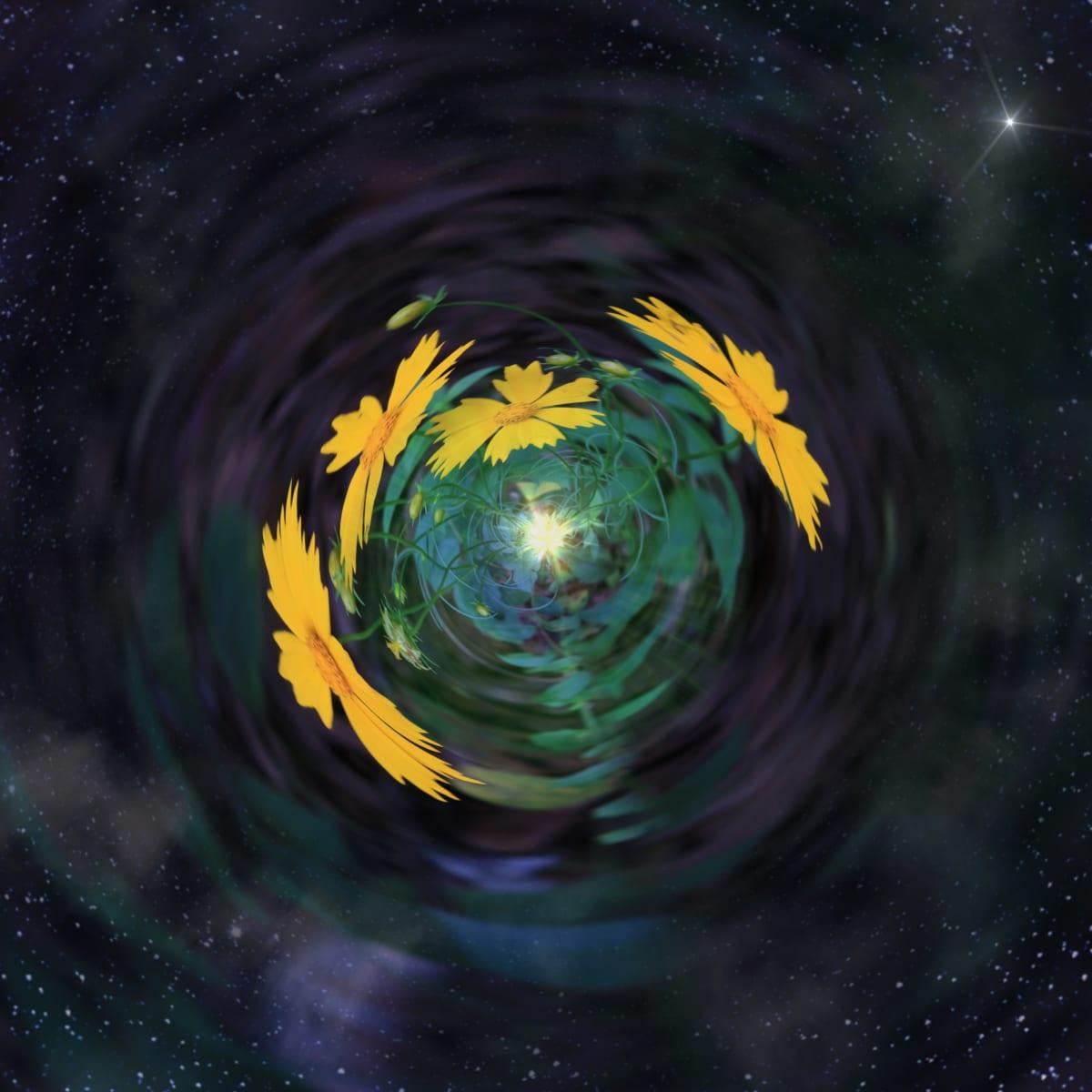 Inner Space by Y. Hope Osborn