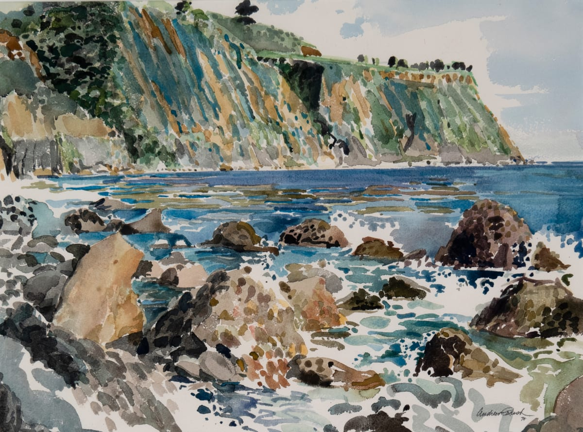 Big Sur by Andrew Rush