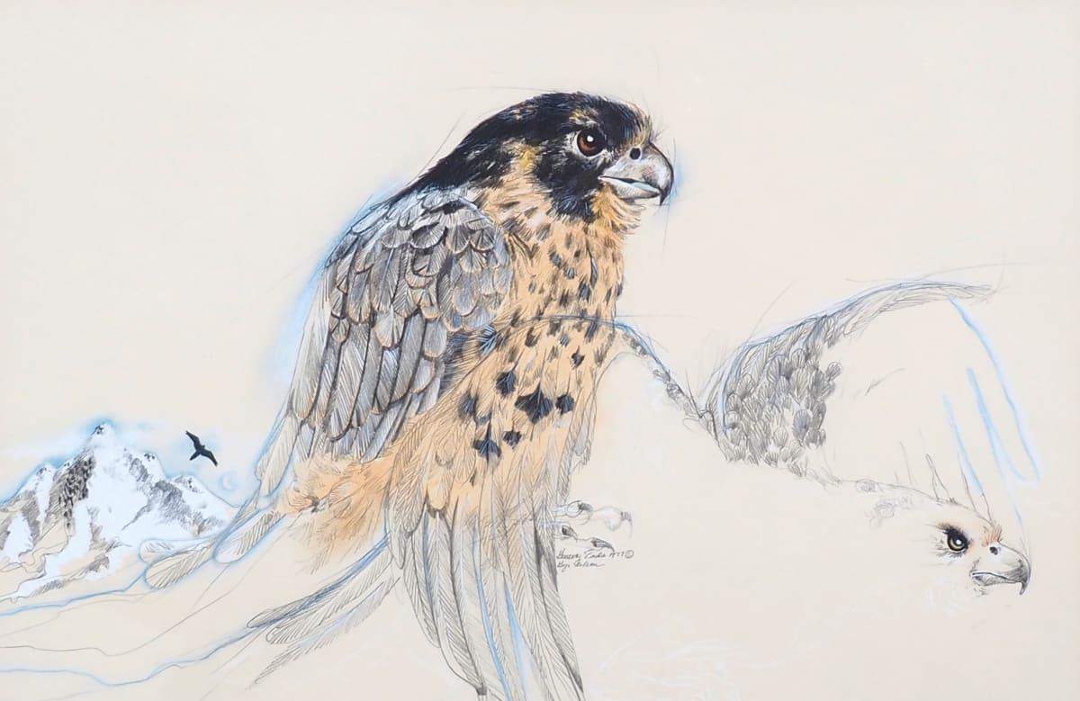 Gyr Falcon by Geneva  Eads