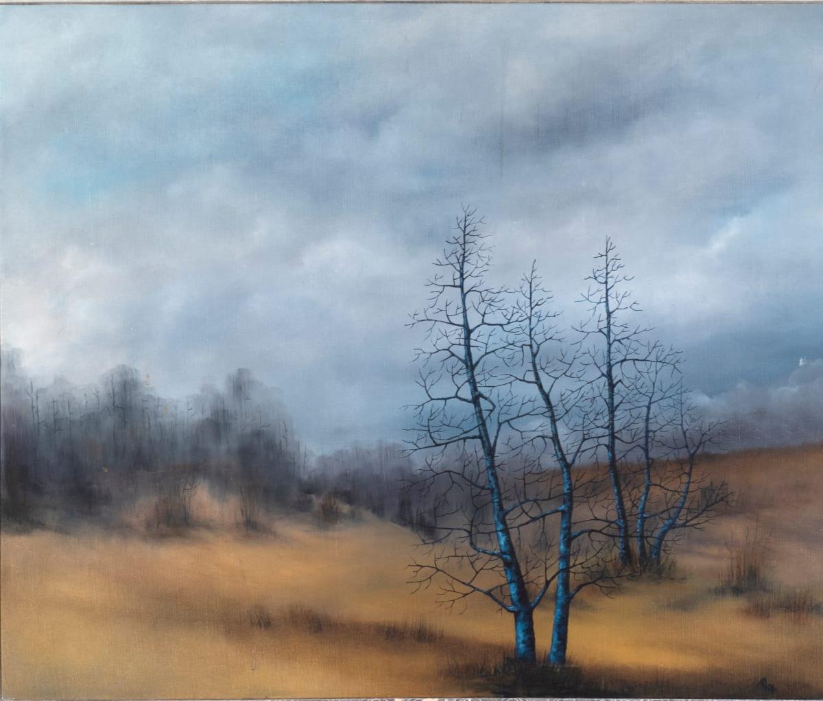 Along Cherry Creek by Robert Race
