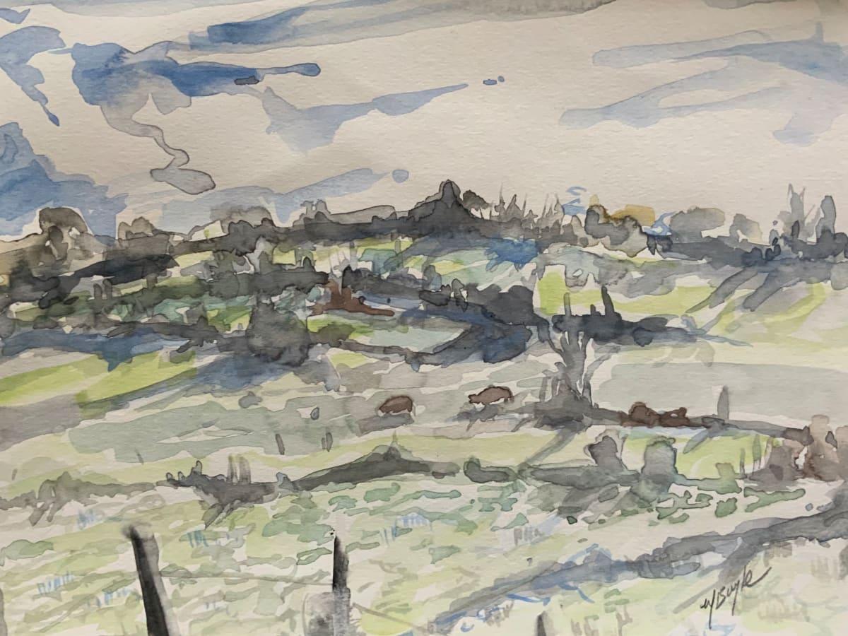 Morning fields,  Garryross
