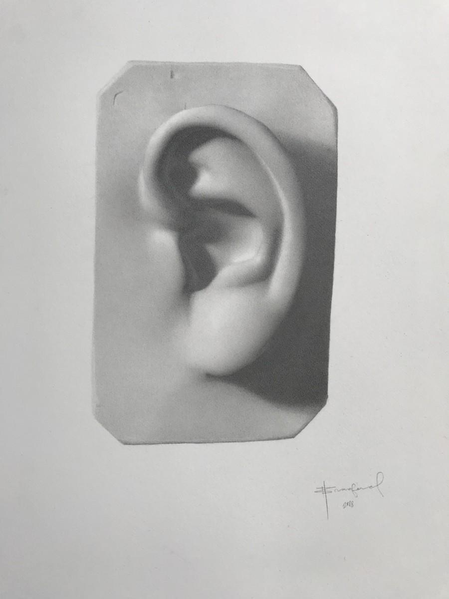 David's Ear