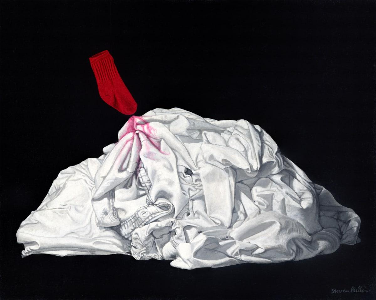 Domestic Perils by Steve Miller