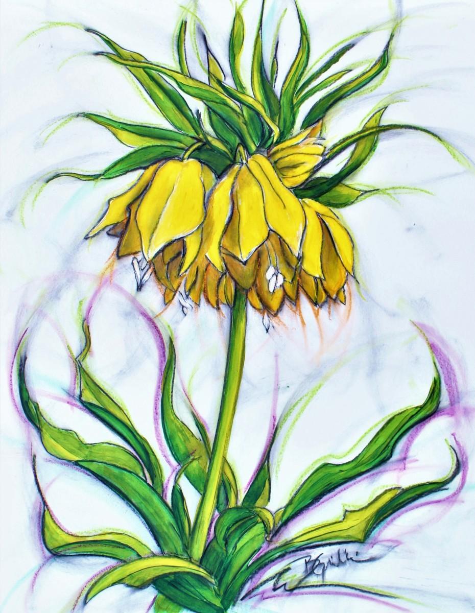 Fritillaria by Brenda Gribbin