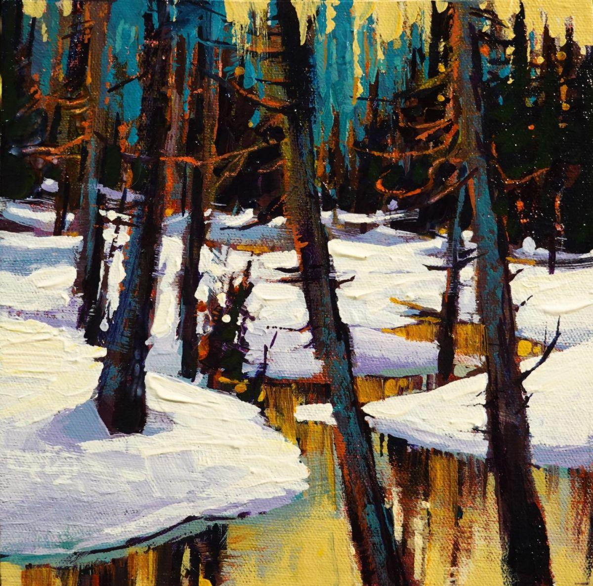 Frozen Creek by Tatjana Mirkov-Popovicki