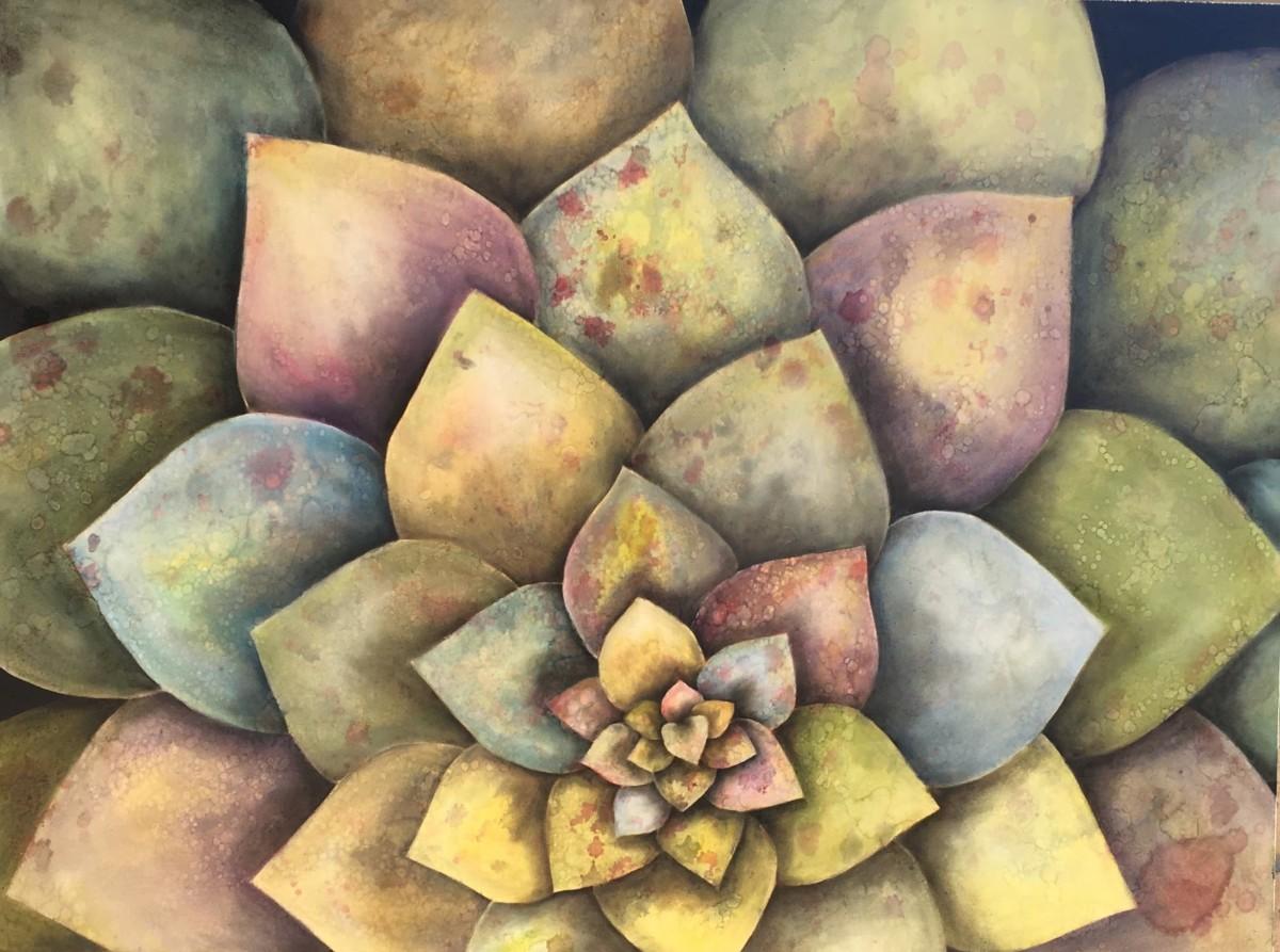 Garden Mandala by Ansley Pye