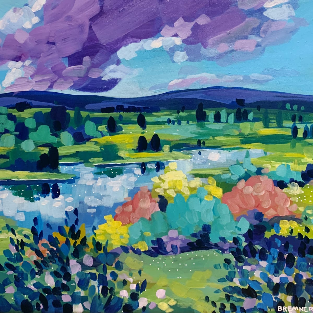 Flooded Fields by Clair Bremner