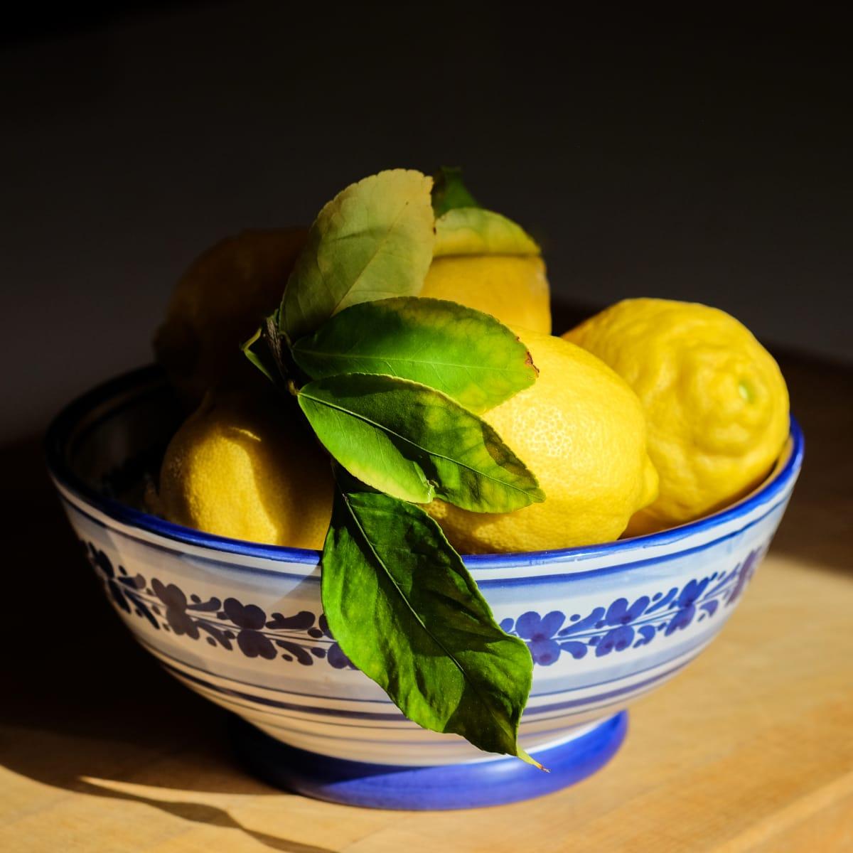 Backyard Lemons by Kelly Sinclair