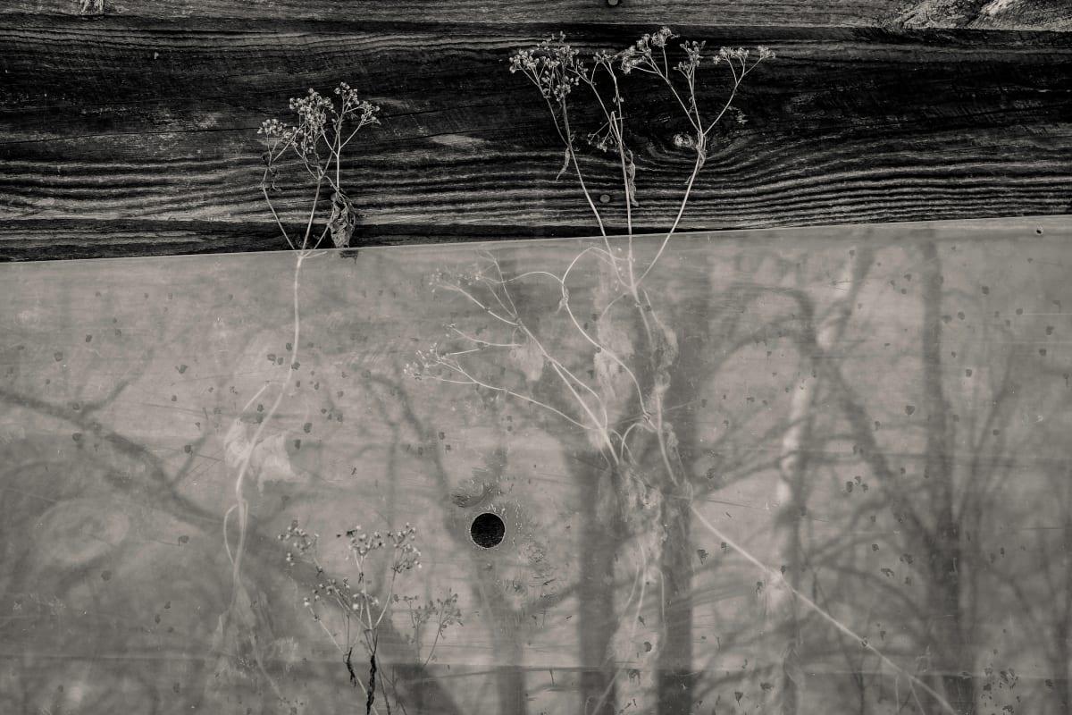 winter wabe sabi2 by Kelly Sinclair