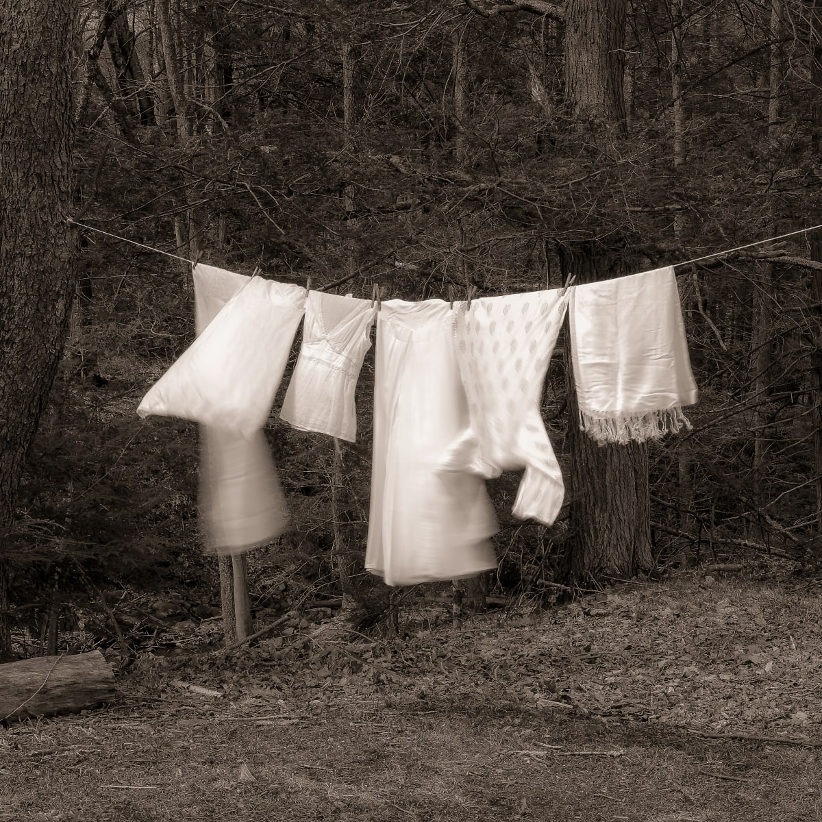 Laundry day by Kelly Sinclair