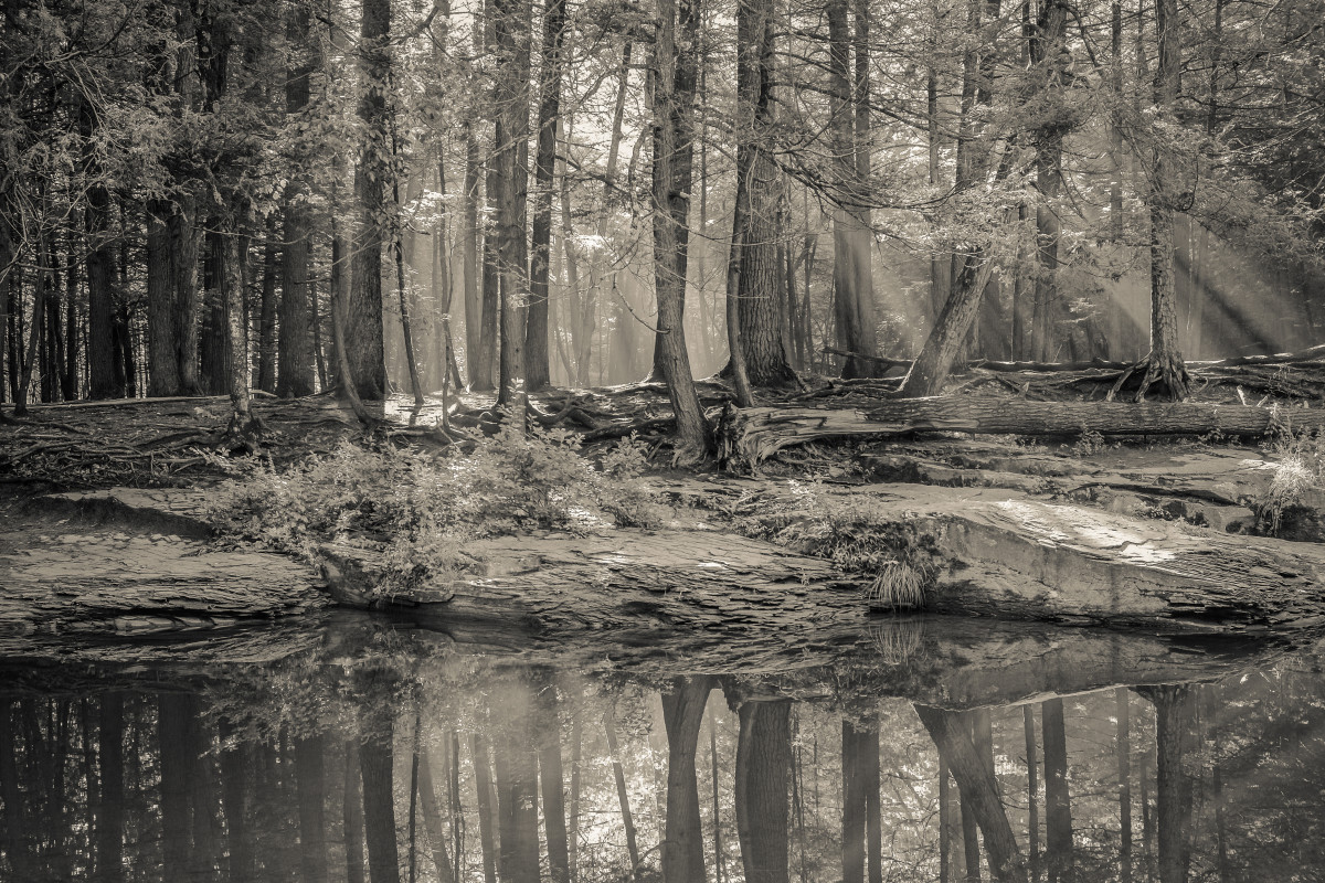 Morning, Big Deep by Kelly Sinclair