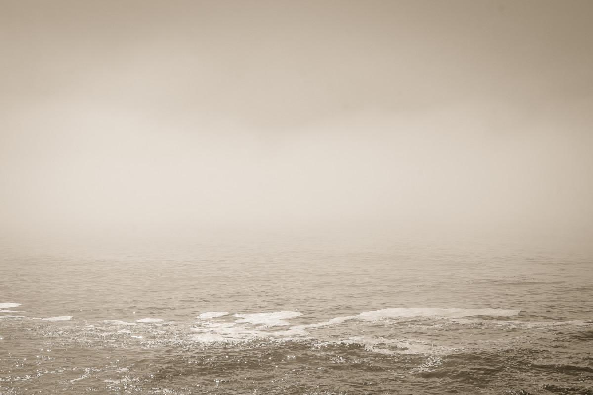 Ocean VIII by Kelly Sinclair
