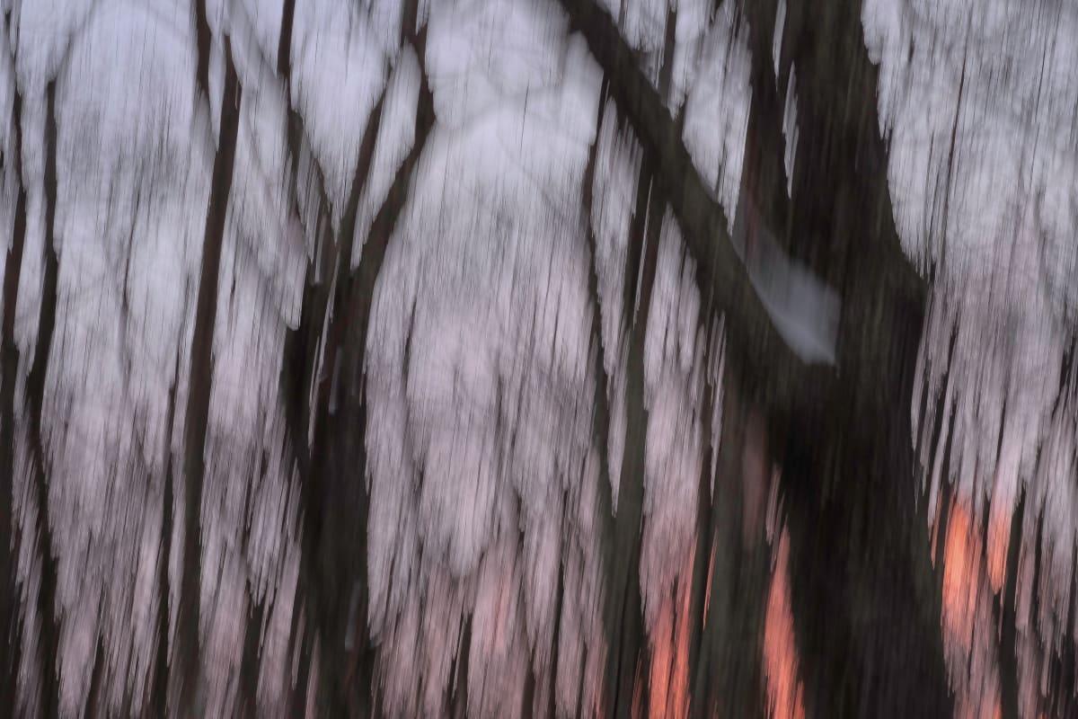 sunrise by Kelly Sinclair