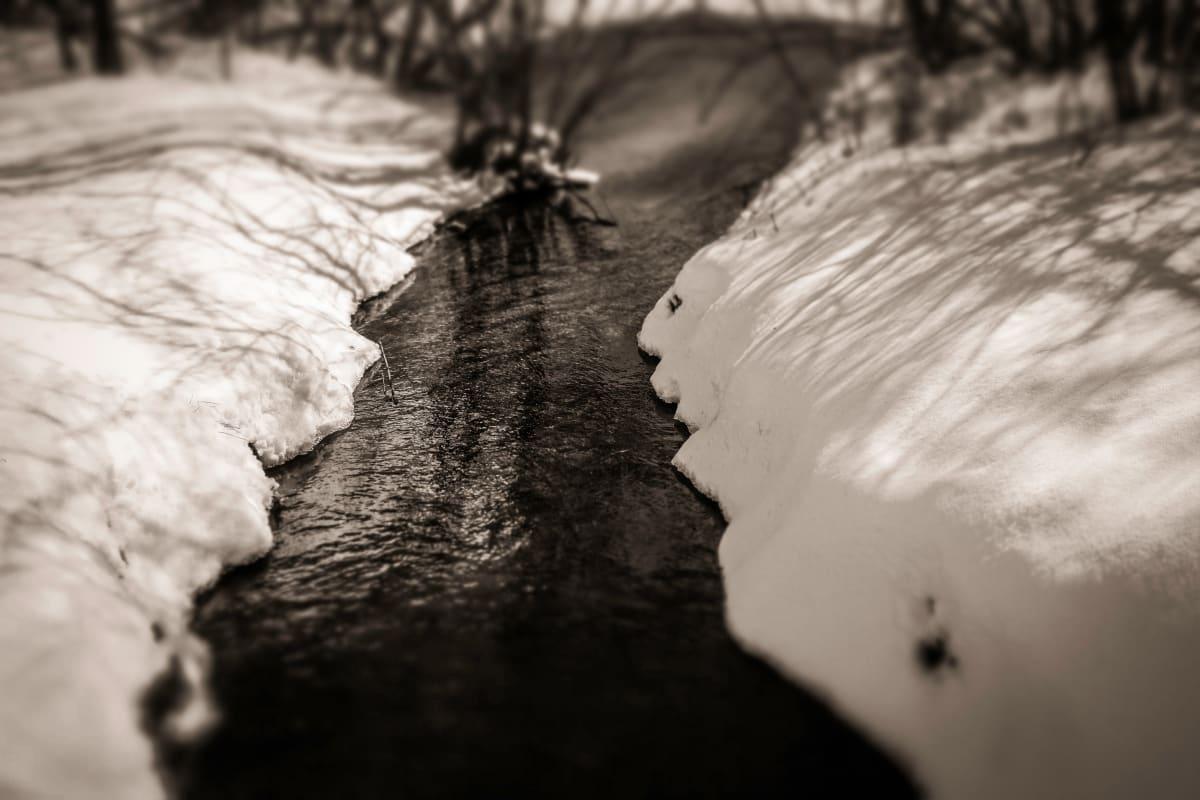 winter stream by Kelly Sinclair
