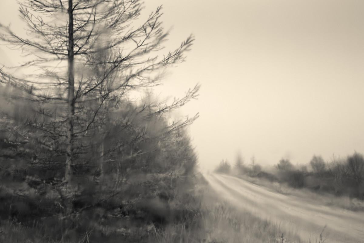 Land of my Father 3      FRA021 by caroline fraser