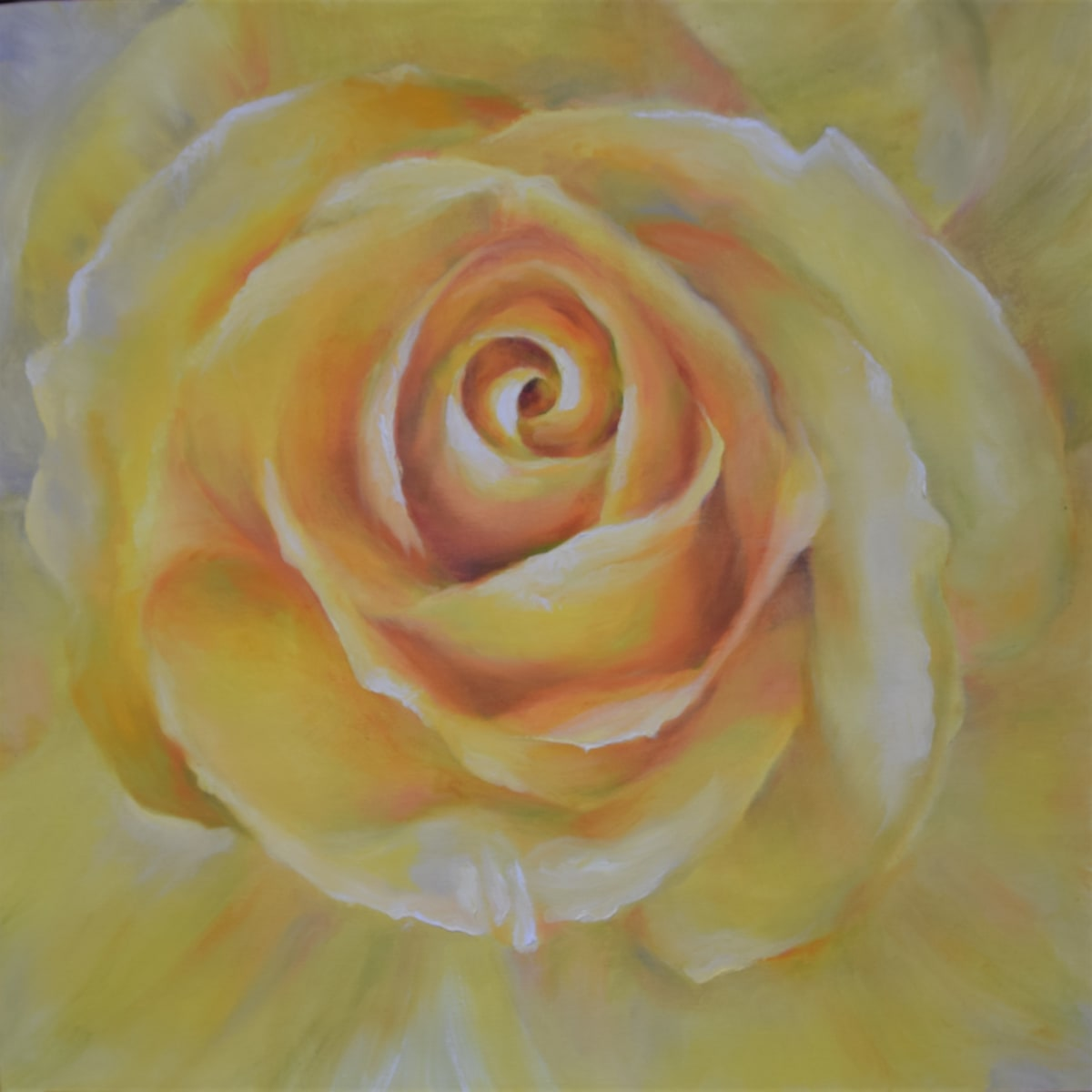 Yellow Rose on Gallery Wrapped Stretched Canvas by Monika Gupta