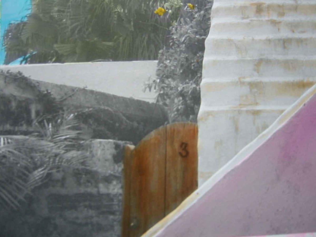 Backyard by Karen Phillips~Curran