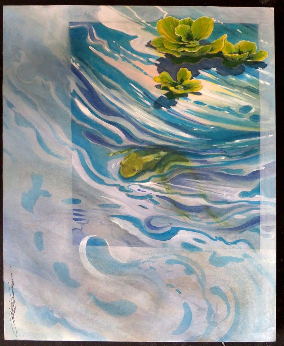 Frog & Cabbage by Karen Phillips~Curran