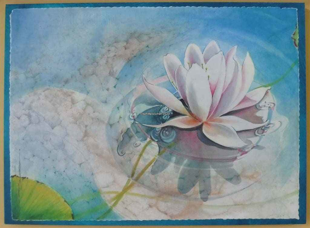 Late Afternoon Lily by Karen Phillips~Curran