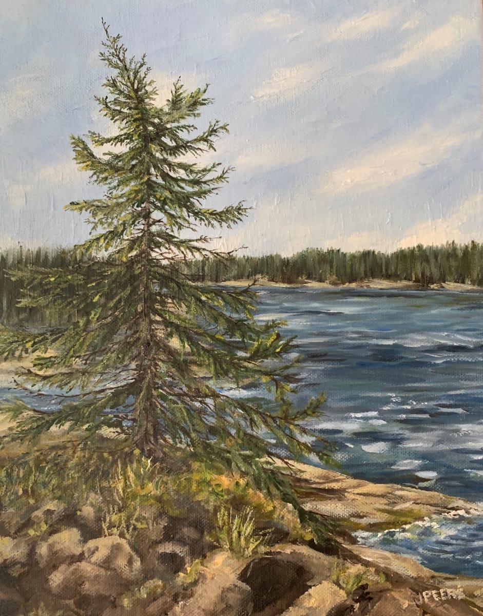 Lone Pine by Jennifer Peers