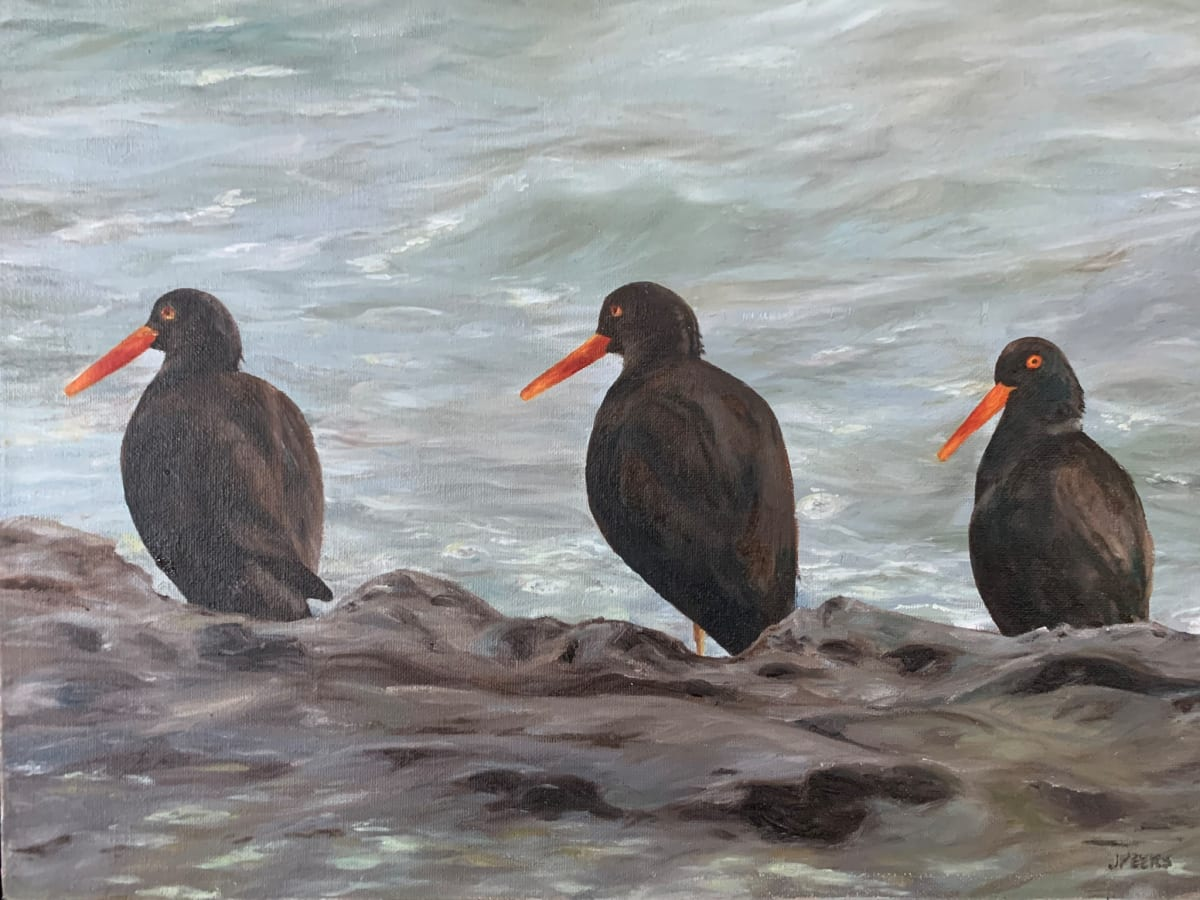 Oyster Catchers by Jennifer Peers