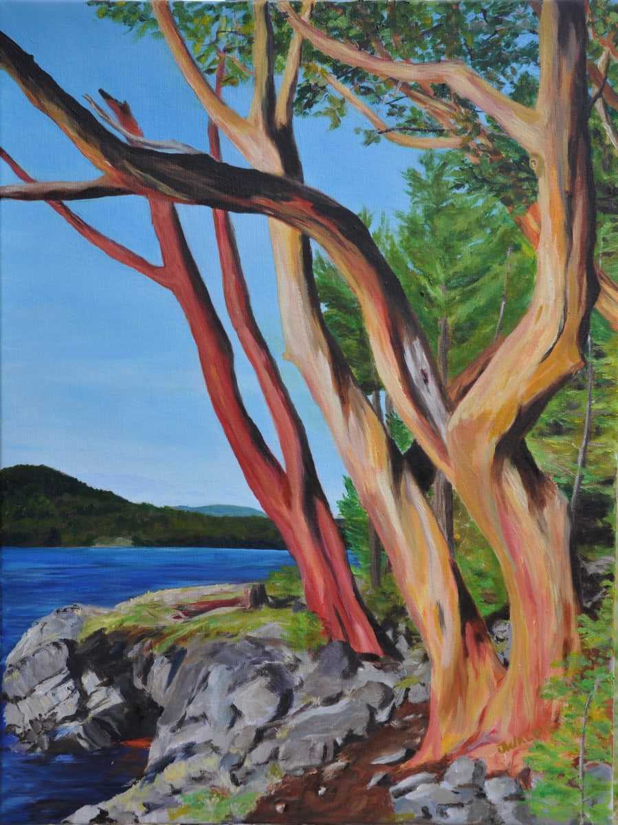 Winding Road by Jody Waldie