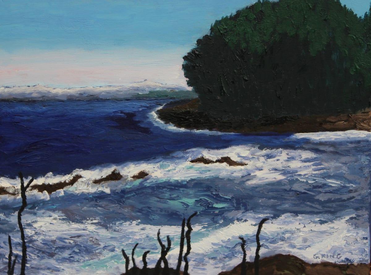 Georgeson Island by Glenda King