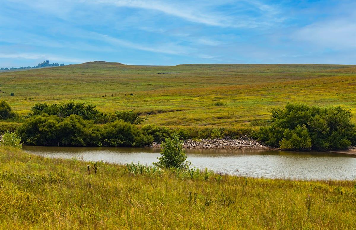 Tallgrass Prairie, Afternoon #2 by Rodney Buxton