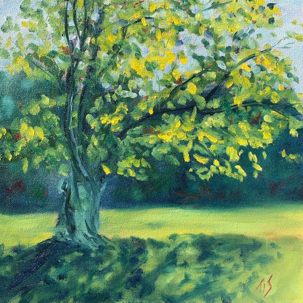 Ancient Tree at Ayr Mount (study) 36.07884N 79.08567W